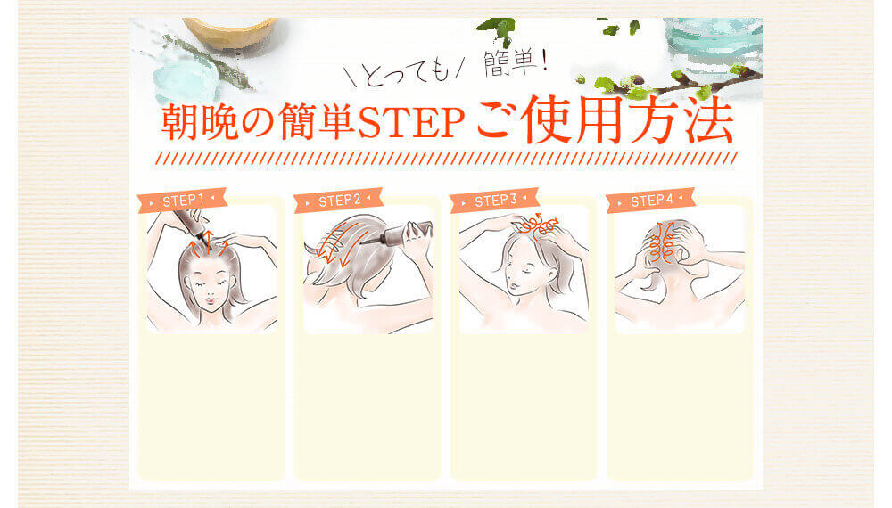 ご使用方法 STEP1 STEP2 STEP3 STEP4